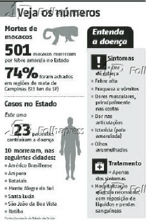 Veja os números - Febre Amarela