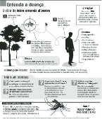 Entenda a doença – Febre Amarela