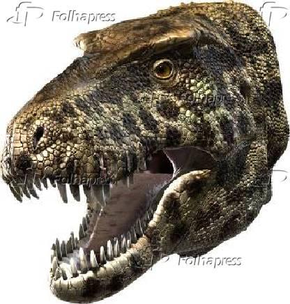 Cabeça de um Tyrannosaurus rex com fundo branco