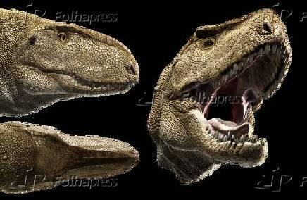 Abelisaurus comahuensis