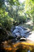 Cachoeira do Tombo, no Parque Estadual da Cantareira, em São Paulo
