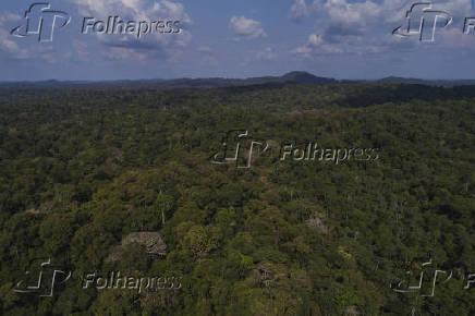 Vista aérea da Floresta Estadual (Flota) do Paru (PA)