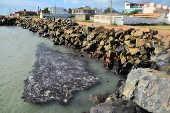 Manchas de óleo atingem a praia da Coroa do Meio (SE)