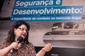 Seminários Folha - Segurança e Desenvolvimento