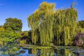Jardins de Giverny - França