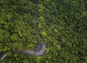 Trecho da chamada Estrada Velha de Santos, desativada para automóveis