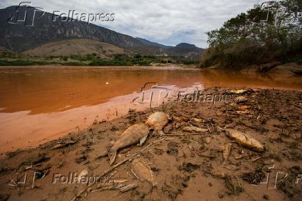 Lama no rio Doce em Resplendor (MG)