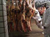 Linha de produção e corte de carne