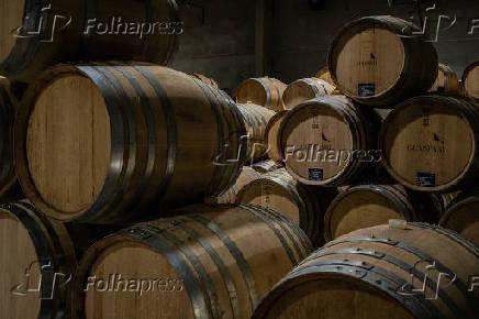 Barris na vinícola Guaspari, em Espírito Santo do Pinhal (SP)