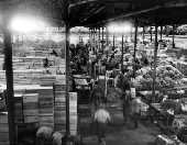 Mercado Municipal São Paulo 85 anos