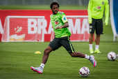 Seleção Brasileira - Fred