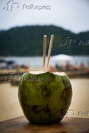 Coco com canudo de papel na praia do Gonzaga, em Santos (SP)