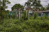 Casa abandonada na comunidade do Forte Príncipe da Beira