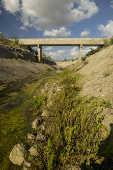 Trecho do reservatório com terra e vegetação exposta pelas rachaduras